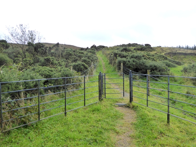 Adrian's Way at Loughanleagh