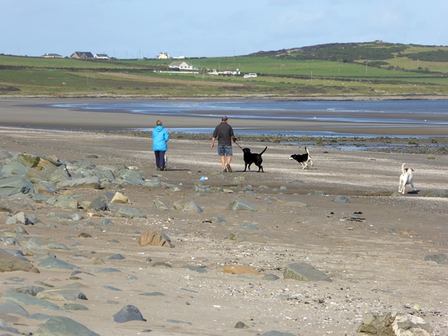 Dog walkers on the beach at Ganderstown