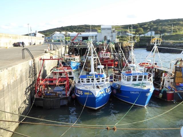 Fishing fleet at Port Oriel