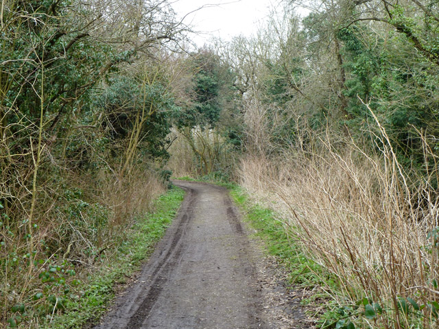Ashley Lane