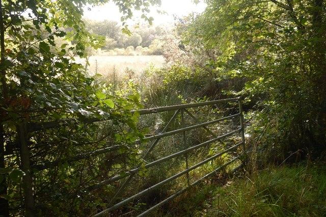 Gate by Druim na Chlaoidh