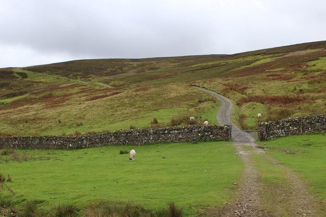 Track on Summer Lodge Moor