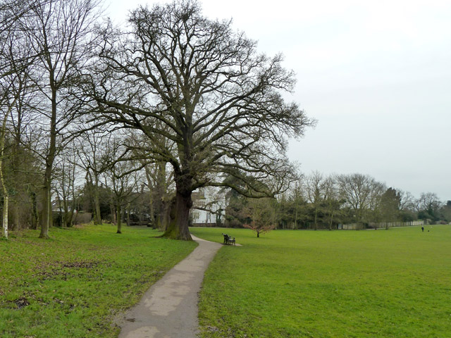 Path, Mill Hill Park