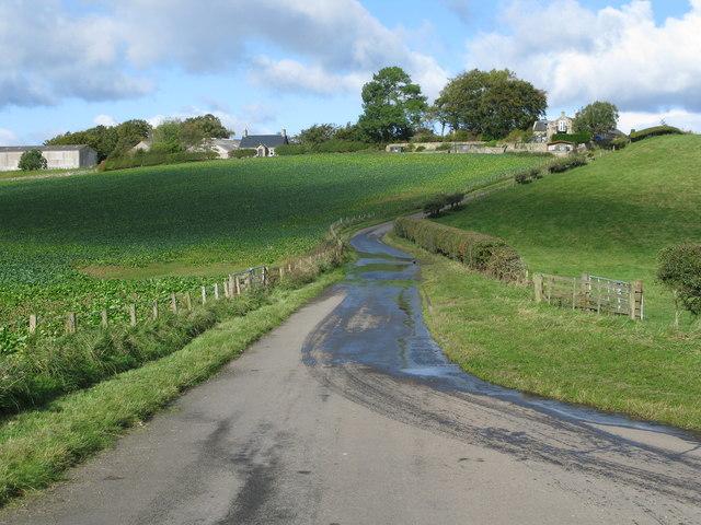 Minor Road north to Yorkston
