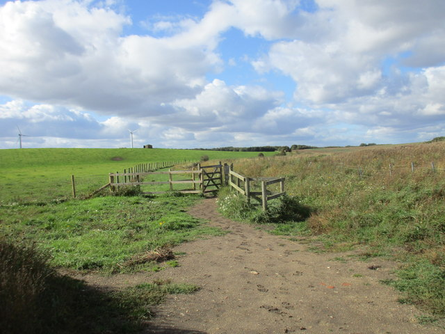 Footpath at Withow Gap