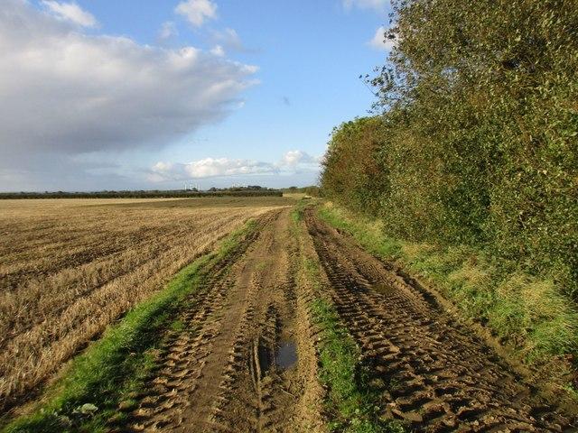 Farm track off Dunnington Lane