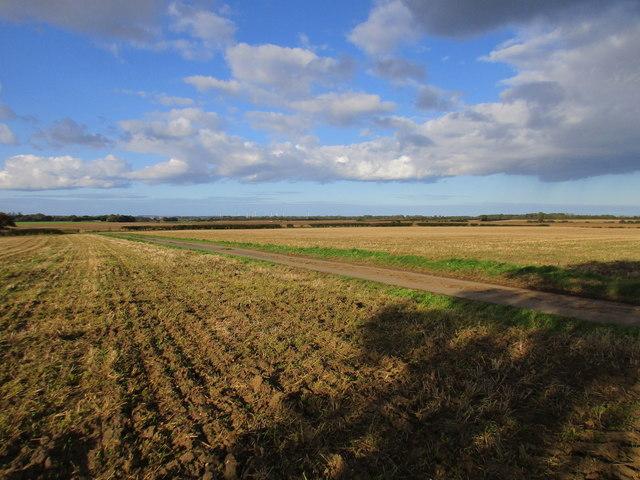 Stubble fields, Barbriggs