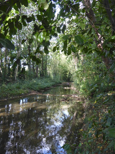 The Hogsmill River: view upstream