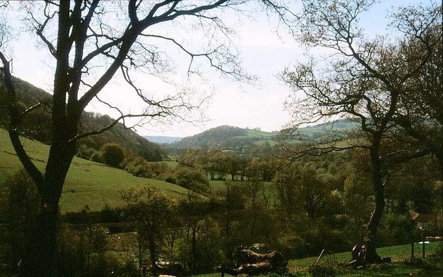 Teign valley near Bridford Mills, 2000
