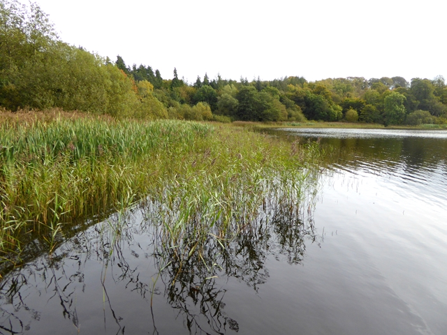 Northern end of Castle Lough