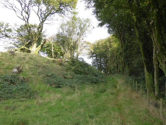 Ditch at Cadbury Castle hill fort