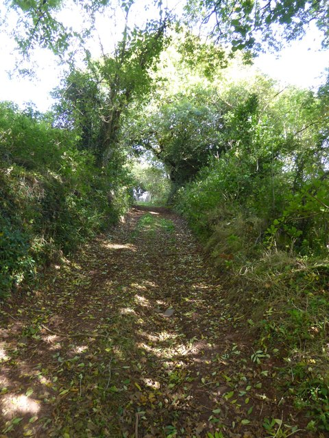 Footpath and lane near Raddon Hill Farm