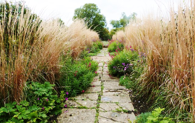 Pathways through the flowers and grasses, Tintinhull Gardens