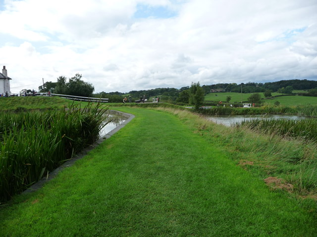 The bank between the top two side ponds at Foxton
