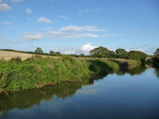 Farmland north of Sybolds Spinney