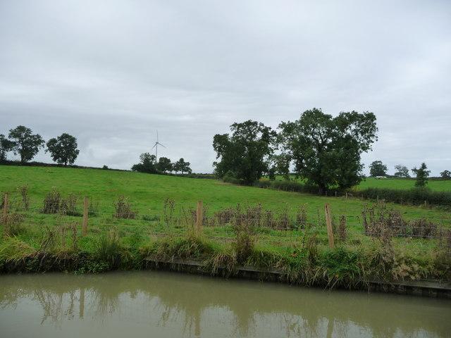 Field boundary south-east of Flint Hill Farm