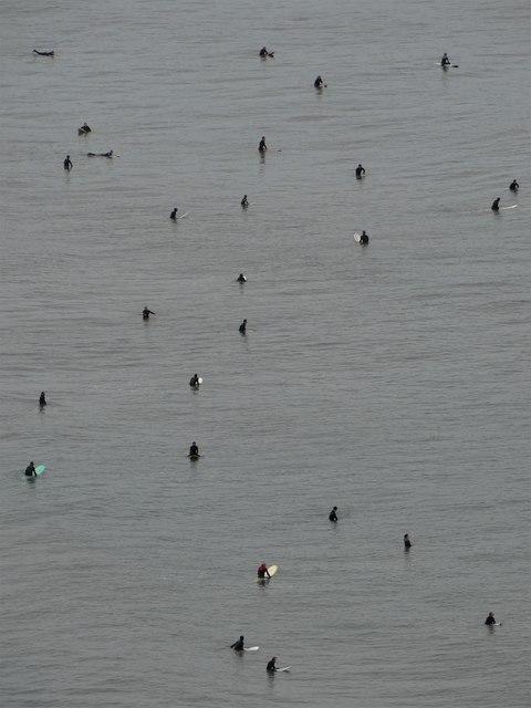 Surfers in North Bay, Scarborough