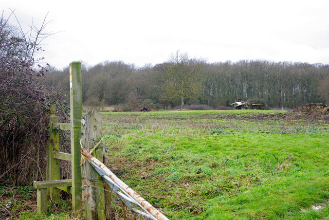 Field west of Crowhurst church