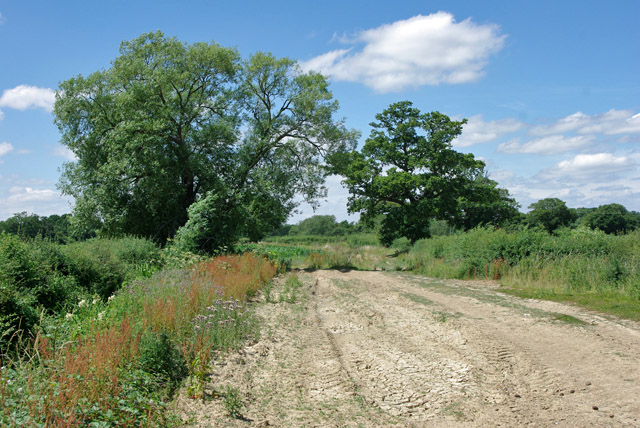 Bridleway to Smalls Hill Road