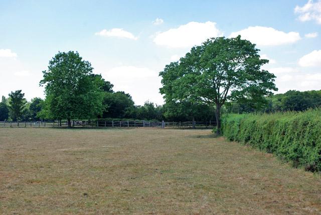 Field north of Deanoak Lane