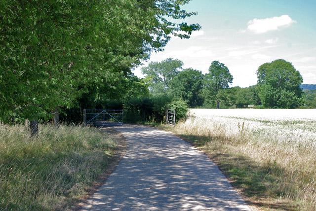 Footpath south of Burys Court