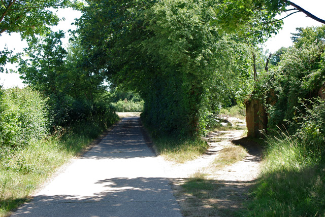 Footpath and road south from Burys Court