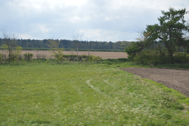 Farmland between railway and Hereward Way