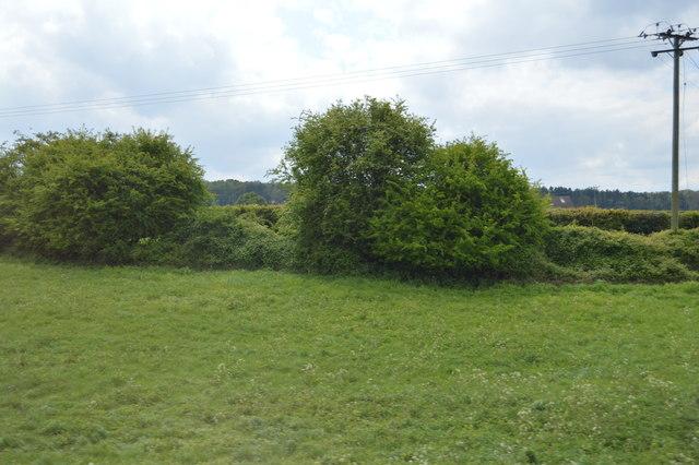 Near Limekiln Farm