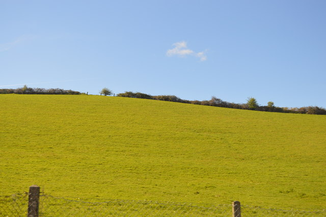 Field above the A38