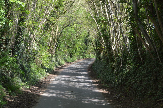 Lane to Harefield