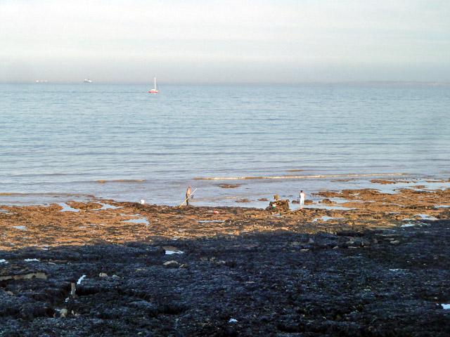 Low tide fishermen
