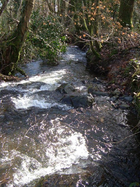 Langworthy Brook
