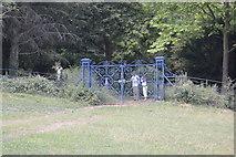 SU8695 : Gates, Hughenden Park by N Chadwick