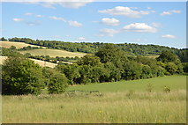 SU8696 : Hughenden Valley by N Chadwick