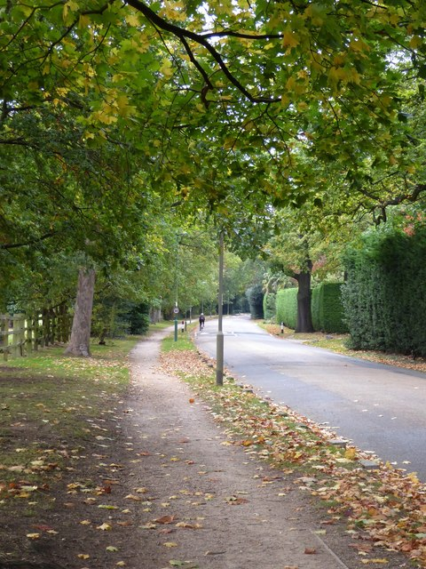 Warren Road, Coombe
