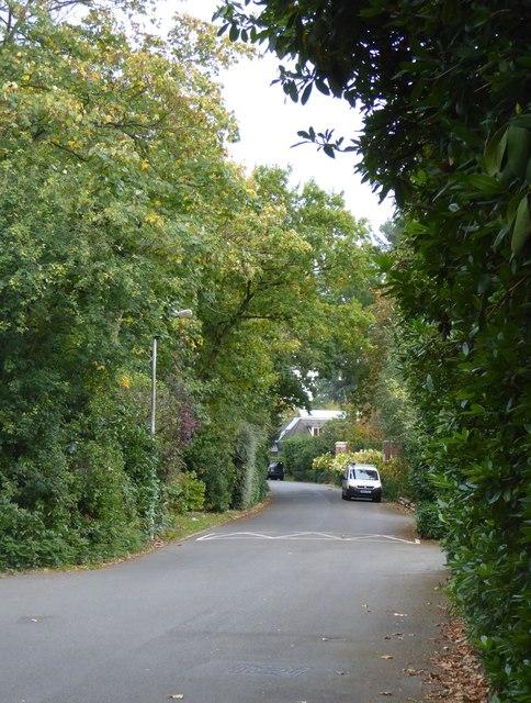 Warren Cutting, Coombe Estate
