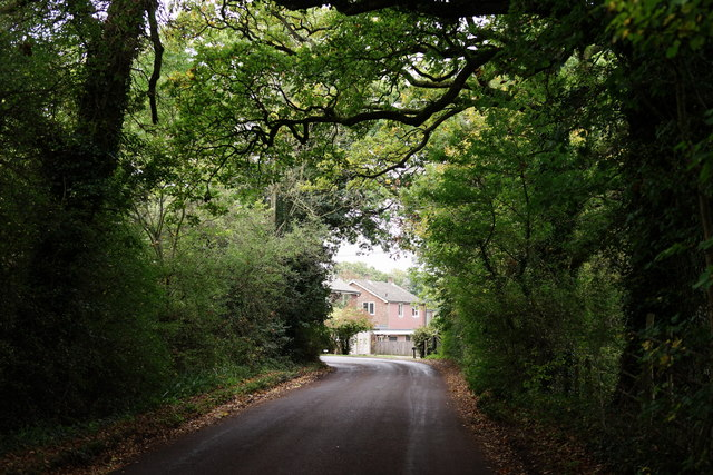 Valewood Lane