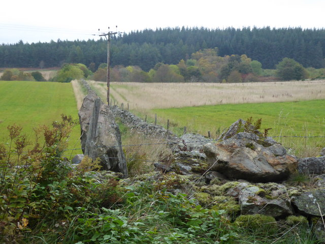 Stone wall field boundary at Brathens