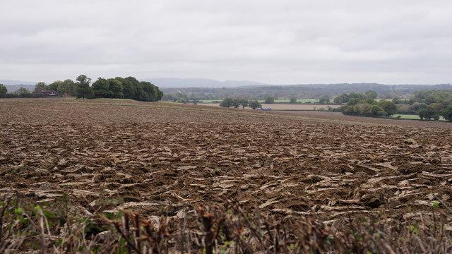 Itchingfield