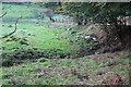 SO1604 : Stream, Pont Gwaithyrhaeryn by M J Roscoe