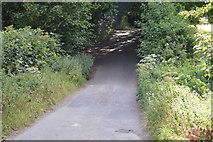 SU8596 : Huntshill Lane by N Chadwick