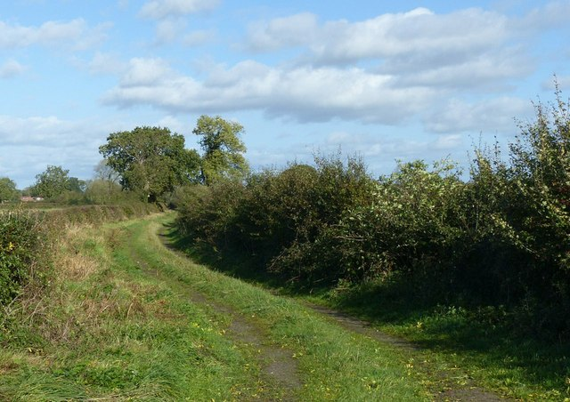 Netherclose Lane