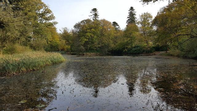 Lake at Llanerchaeron House