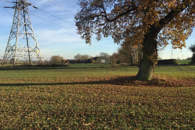 Edge of a field near Chase Farm