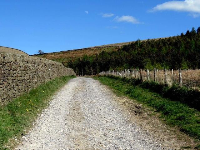 Footpath to Aitken Wood