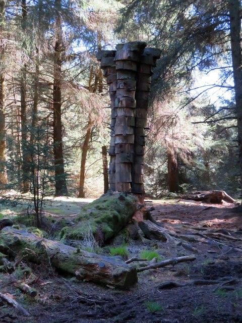 The Quaker Tree in Aitken Wood