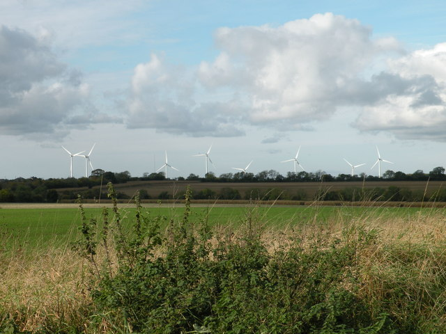 Fields, with view of Wind Farm