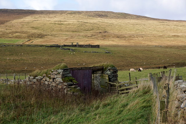 Old shed at Scraefield, Baliasta, Baltasound