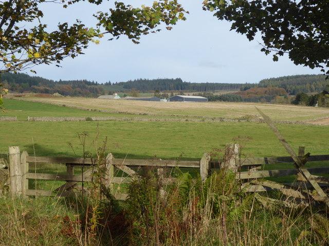 Learney Estate