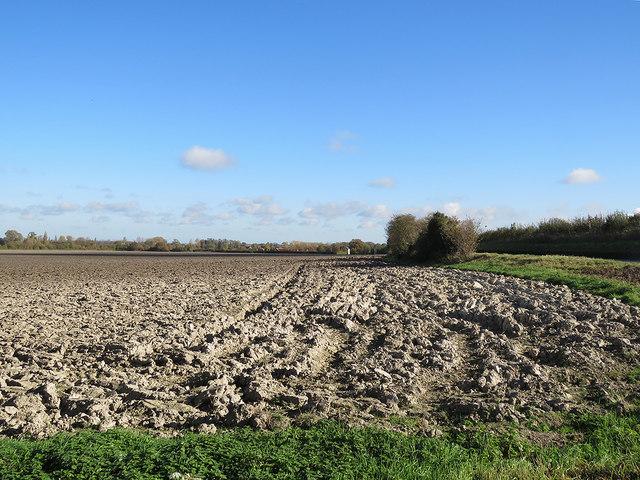 Autumn ploughland in North Hertfordshire
